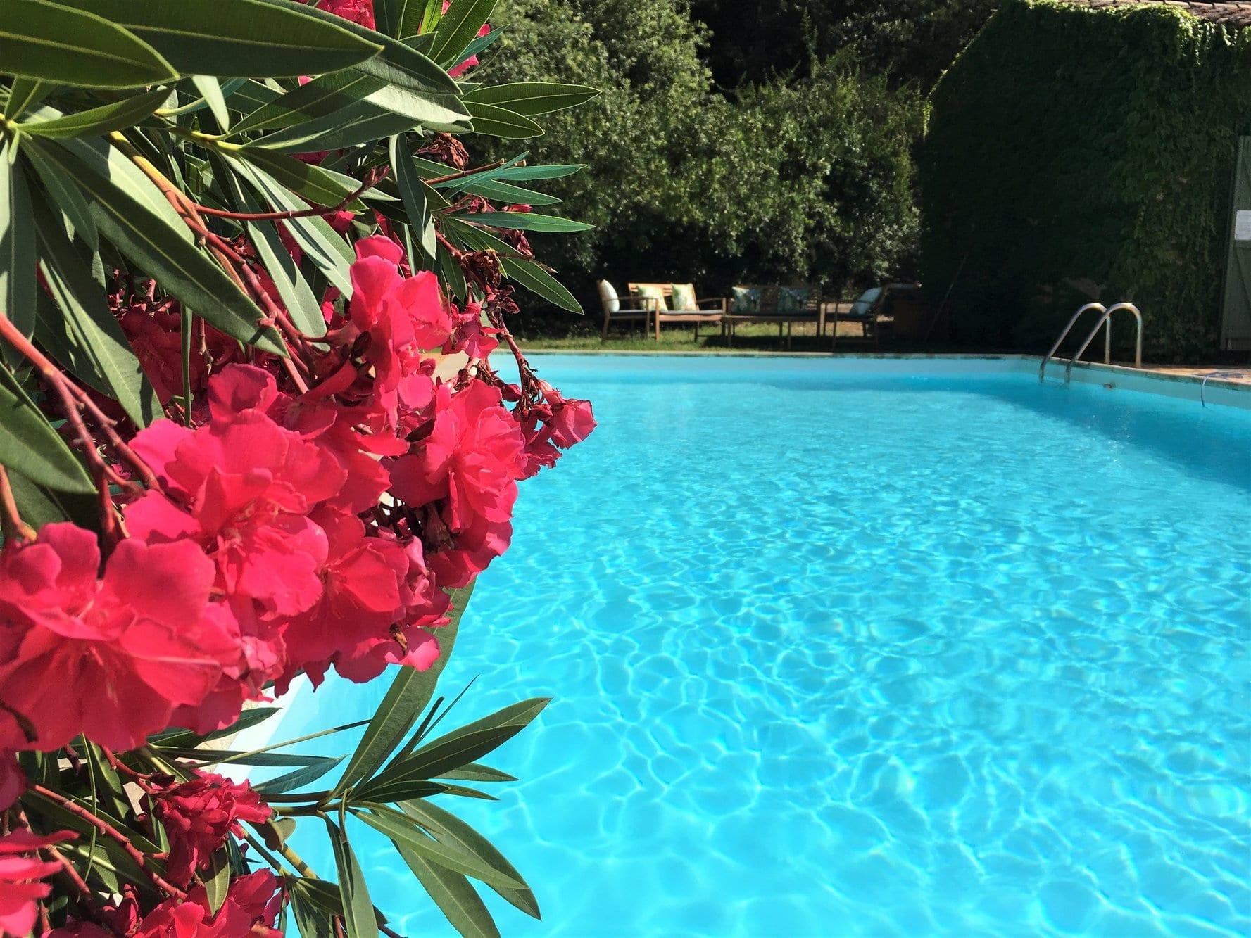 Piscine de la maison d'hôtes Villa Fontane